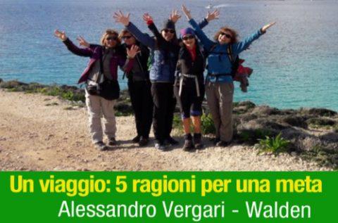 Un Viaggio | Alessandro Vergari
